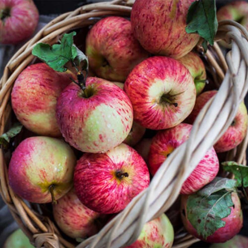 Äpplen är nyttiga, men kan konst vara nyttig? || dinatelje.se